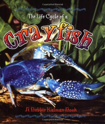 Kalman-Bobbie-Sjonger-Re-The-Life-Cycle-Of-A-Importacion-USA-BOOK-NUEVO